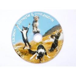 DVD : Tricks for Balance, Strenght & Coordination