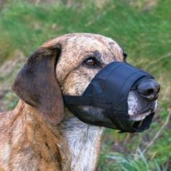Muselière Réglable pour chiens