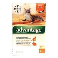 Advantage 40  (- 4Kg) Anti-Parasites pour Chat