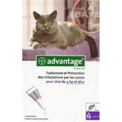 Advantage 80  (+ 4Kg) Anti-Parasites pour Chat