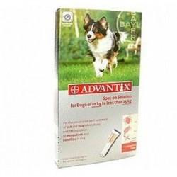 Advantix Chien Moyen (10/25Kg-6 pipettes)