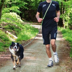 Laisse Dog Activity jogging