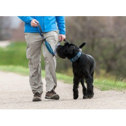 DOG COPENHAGEN : Laisse Urban Trail