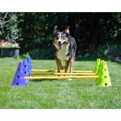 FitPaws mini haie Canine...